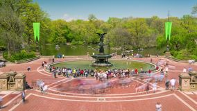 Central Park in New York City Timelapse of Trees in bloom in Midtown Manhattan, spring, water, funtain