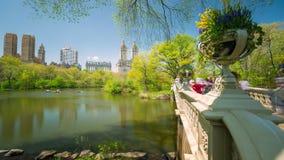 Central Park in New York City Timelapse von Bäumen in der Blüte in Midtown Manhattan, Frühling, Wasser, Boot stock footage