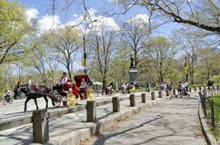 Central Park New York City Royalty Free Stock Photo