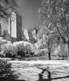 Central park, New York Royalty Free Stock Photo