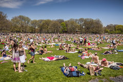 Central Park Stock Image