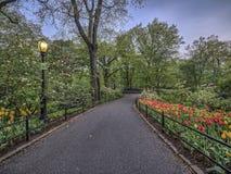 Central Park New York City vår Royaltyfri Bild