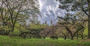 Central Park New York City vår Arkivfoton