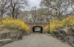 Central Park, New York City. Willowdell Arch in early spring in Central Park New York City Stock Image