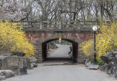 Central Park, New York City. Willowdell Arch in early spring in Central Park New York City Stock Photo