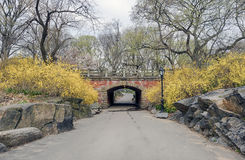 Central Park, New York City. Willowdell Arch in early spring in Central Park New York City Royalty Free Stock Images