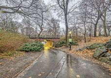 Central Park, New York City. In winter Stock Image