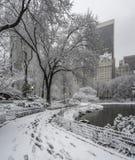Central Park, New- York Cityschneesturm Stockbild