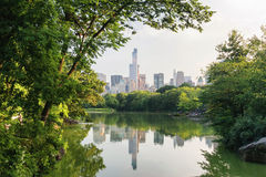 Central park in New York Royalty Free Stock Photography