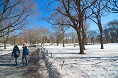 Central Park, New York na neve Imagens de Stock Royalty Free