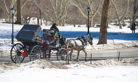 Central Park, New York na neve Foto de Stock Royalty Free
