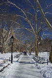 Central Park, New York, snö och vinter Royaltyfria Bilder