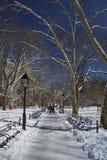 Central Park, New York, sneeuw en de winter Royalty-vrije Stock Afbeeldingen