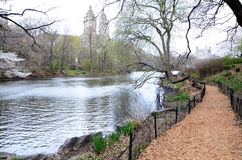Central Park in New york. USA Royalty Free Stock Image