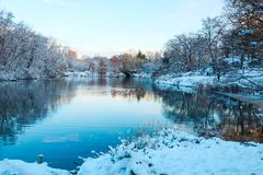 Central Park. New York. USA in winter Royalty Free Stock Image