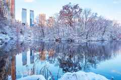 Central Park. New York. USA in winter covered with snow royalty free stock images