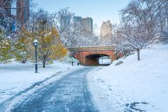 Central Park. New York. USA in winter covered with snow stock photo