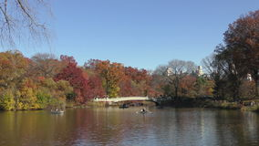 Central park New York stock video footage