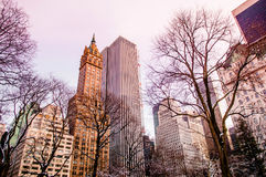Central Park, New York in winter Stock Photo