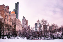 Central Park, New York in winter stock image