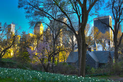 Central Park. A nice mix between nature and building in Central Park, NY Royalty Free Stock Photo