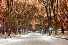 Central Park Night, New York City Stock Photos