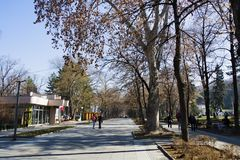 Central park in Niska Banja, spa resort in Serbia. Nis¡ka Banja Serbian is one of five city municipalities which constitute the city of Nis. It is also one of stock image