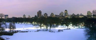 Central Park no inverno Foto de Stock Royalty Free