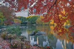 Central Park no lago Fotos de Stock Royalty Free