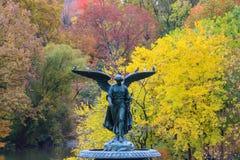Central Park no outono Fotografia de Stock