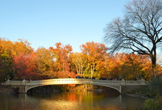 Central Park on November 15, 2014 in Manhattan, New York City, USA. Royalty Free Stock Photos