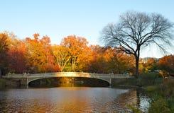 Central Park on November 15, 2014 in Manhattan, New York City, USA. Stock Photos