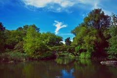 central park nowy Jork Fotografia Stock
