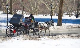 Central Park, Nueva York en la nieve Foto de archivo libre de regalías