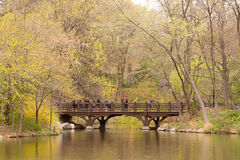 Central Park, NY Royalty Free Stock Photography