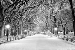 Central Park, NY in sneeuw bij dageraad wordt behandeld die Stock Foto
