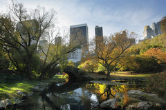 Central Park in NYC Lizenzfreies Stockfoto