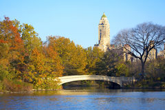 Central Park in NYC Stock Image