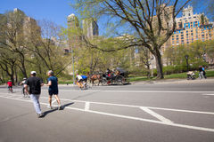 Central Park NYC Royaltyfri Foto