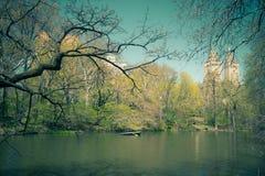 Central Park NYC del vintage Imágenes de archivo libres de regalías