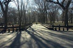 Central Park NYC en invierno Fotografía de archivo
