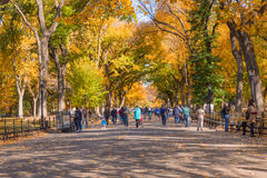 CENTRAL PARK NYC MALL WALK Royalty Free Stock Images