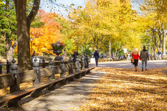 Central Park NYC Royalty Free Stock Images