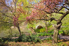Central Park NYC Royalty Free Stock Photo