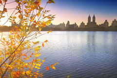 Central Park in NYC Royalty Free Stock Photography