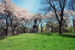 Central Park NYC in spring Royalty Free Stock Photo