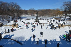 Central Park op 24 Januari, 2016, NYC, de V.S. Stock Foto