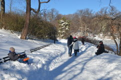 Central Park op 24 Januari, 2016, NYC, de V.S. Stock Fotografie