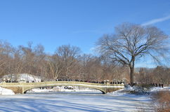 Central Park op 24 Januari, 2016, NYC, de V.S. Royalty-vrije Stock Fotografie