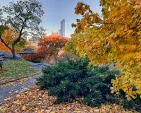 Central Park, otoño de New York City imágenes de archivo libres de regalías